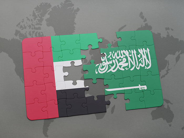 UAE, Saudi Arabia agree plan for joint cryptocurrency