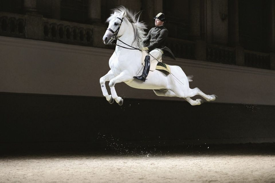 Vienna riding school set to make MidEast debut in Abu Dhabi