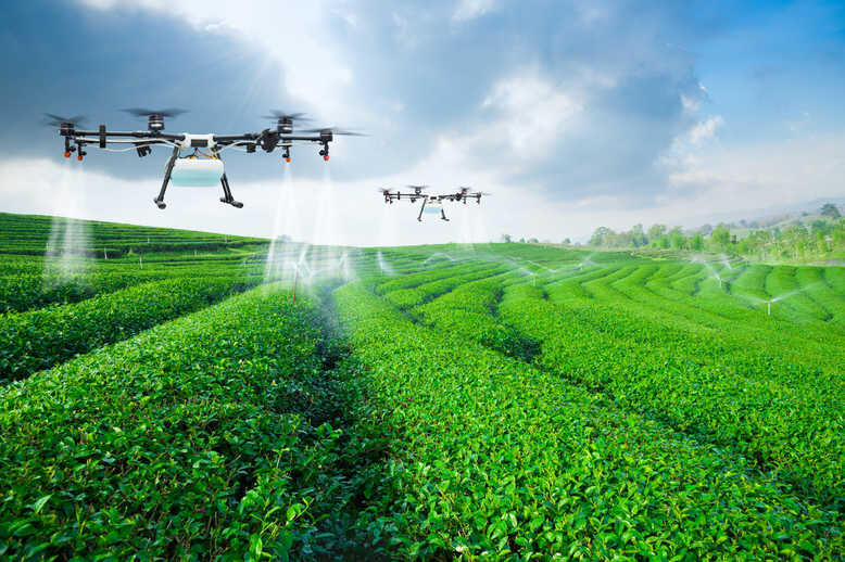 Abu Dhabi Crown Prince approves $272m AgTech incentives