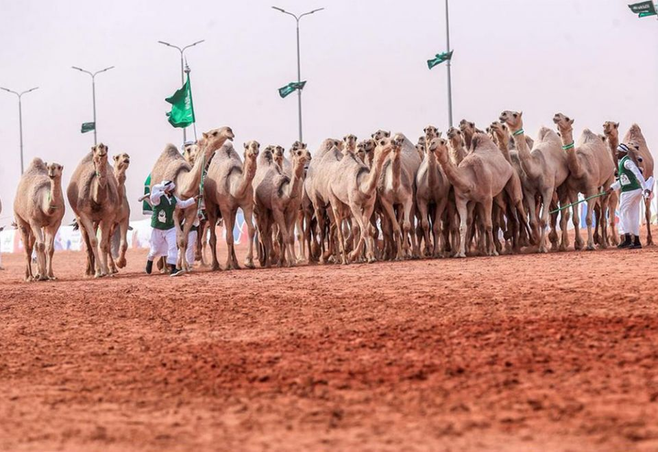 In pictures: Crown Prince of Dubai attends camel festival grand finale in Riyadh