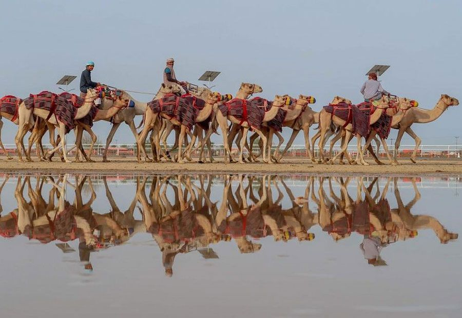 Saudi Arabia's Taif season creates 15,000 jobs amid tourism boom