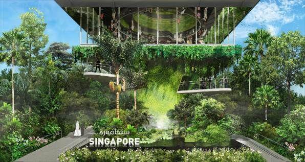 How Singapore plans to go green at Expo 2020 Dubai