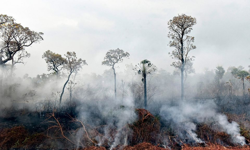 While the Amazon blazes attract worldwide attention, the emergency in Bolivia has been largely forgotten