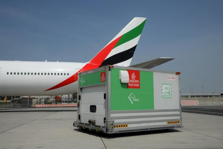 Seafood Souq inks Emirates SkyCargo deal to fly fresh fish to the UAE