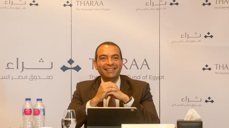 Egypt wealth fund eyes Gulf partners to drum up foreign investment