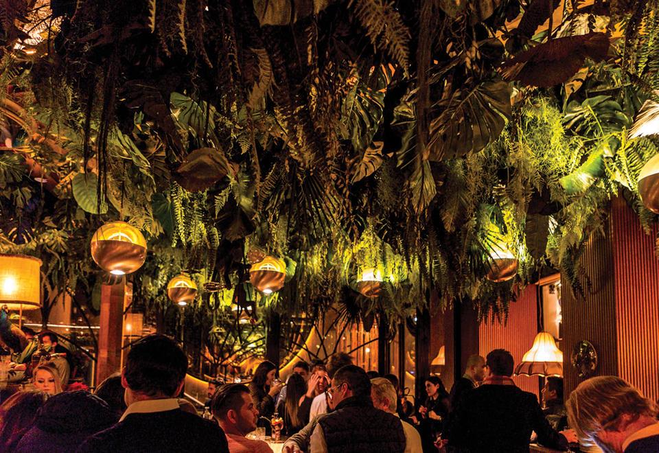 New restaurant Amazonico opens in DIFC