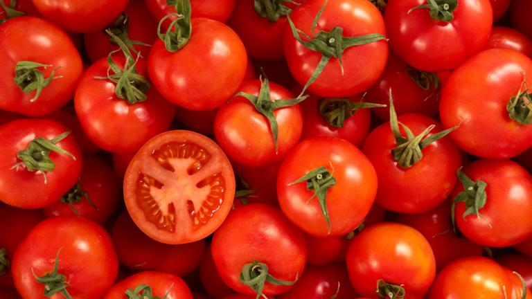 How a tomato revolution is taking place in Abu Dhabi