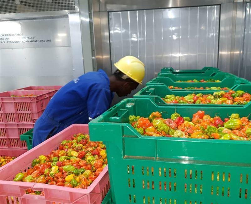How DP World is helping to improve Rwanda's trade capabilities
