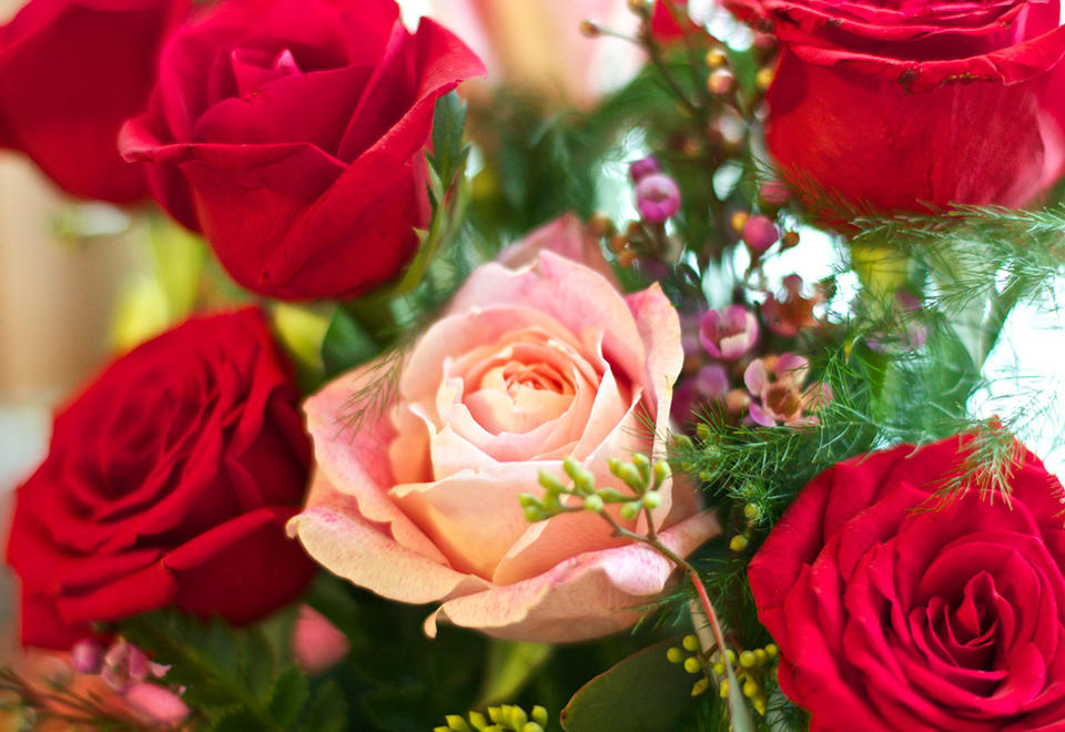 Flower sales surge 100 fold in Dubai ahead of Valentine's Day