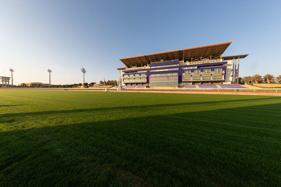 $20m Saudi Cup on track to be best race meeting in the world this year