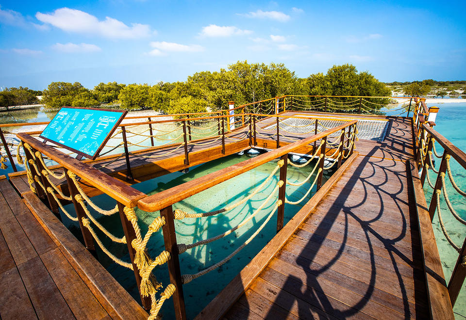 In pictures: Abu Dhabi's new attraction Jubail Mangrove Park