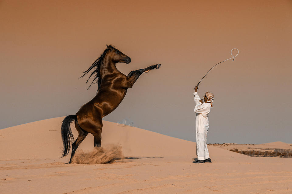 In pictures: 2020 Sony World Photography Awards winners revealed
