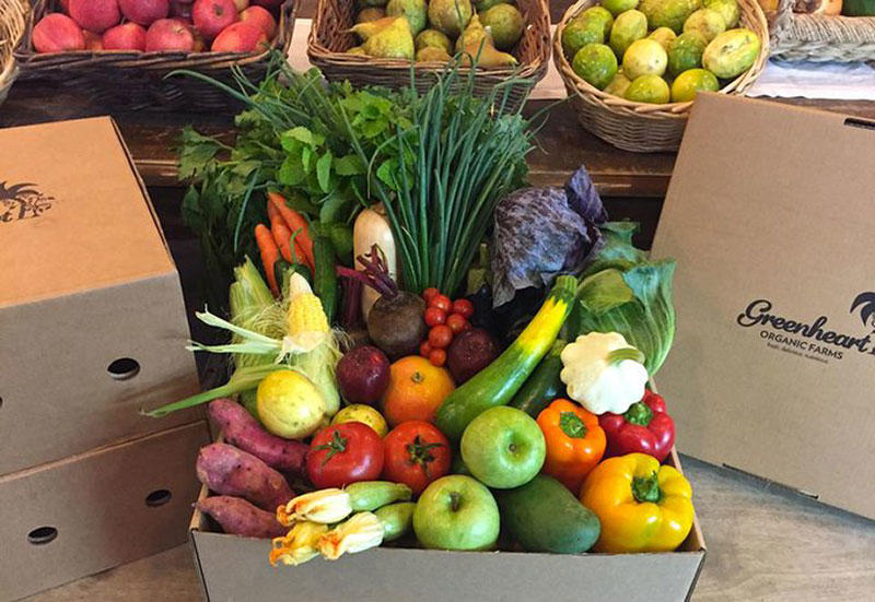 UAE organic food firms report Covid-19-related demand spikes of 300-400%