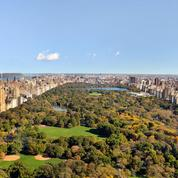Park-Hyatt-New-York-Manhattan-Sky-Suite-Central-Park-View-Skyline_low-res.jpg